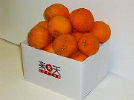2箱買うと送料無料!!今治産【ワケあり】デコポン2.5kg【10P11Apr15】【RCP】