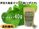 ツボクサ(ゴツコラ)茶葉 40g 安心・安全の伊豆大島産 高鮮度 手摘み 別名 ゴッコラ ゴッコーラ ブラフミー