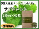 ゴツコラ(ツボクサ ゴッコラ ゴツコーラ)のサプリメント。    ■伊豆大島産の完全無農薬で最上級品のゴツコラ使用■