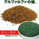 アルファルファ 種 250g 高品質 業務用 オーストラリア産 (Alfalfa 野菜種 あるふぁるふぁ seed スプラウト シード 栽…