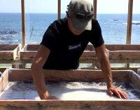 天日塩土佐の塩丸スタンダード30g高知県天日海塩塩お試しサイズ