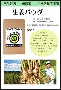 グリーンホッパーしょうがパウダーー20g高知県無農薬自然栽培生姜