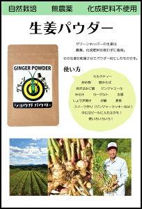 グリーンホッパー しょうがパウダー20g高知県 無農薬 自然栽培 生姜