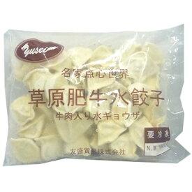 【冷凍水餃子】冷凍草原肥牛水餃子(牛肉入り水餃子)【中華食材】