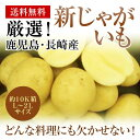 長崎・鹿児島産新じゃがいも約10K箱 L〜2Lサイズホクホクの馬鈴薯をお届けします。【送料無料】