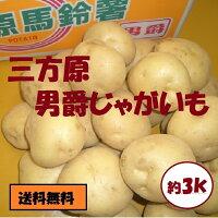 【こだわり野菜】静岡県産三方原じゃがいも【男爵】約3K箱⇒送料無料