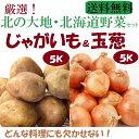 北の大地・北海道野菜約10K入り【じゃがいも5K&北見玉葱5Kセット】【送料無料】