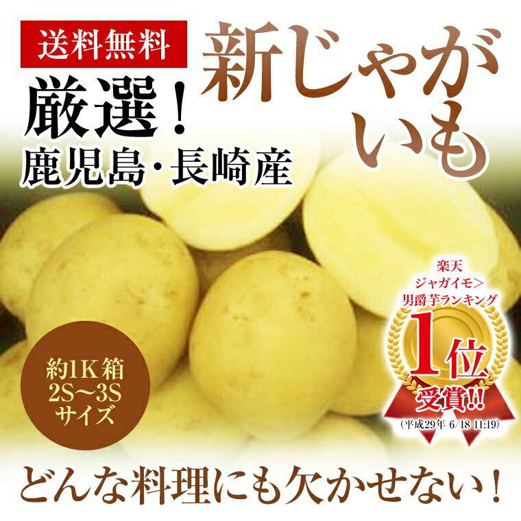九州長崎・鹿児島産新じゃがいも約1K箱 2S〜3Sサイズコロコロと可愛い!