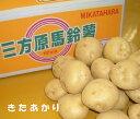 静岡県産三方原馬鈴薯【北あかり】 約10K箱 【送料無料-0621】ホクホクの馬鈴薯をお届けします。【グルメ激うま0701】