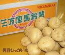 【こだわり野菜】静岡県産三方原じゃがいも【男爵】約3K箱 ⇒送料無料