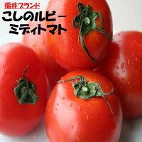 越のルビートマト