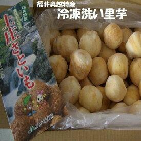 【冷凍】【業務用】*福井県特産洗い里芋約10K箱 芋煮会・芋煮・煮物⇒送料無料
