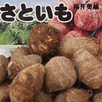 ふくい食の宝石箱【A】福井県の特産品がたっぷり詰まったギフト商品です。季節によって品物は変わります。(奥越里芋・富津甘藷・越のルビ−トマト・加工品等etc5〜6商品詰め合わせ)送料無料