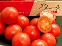 静岡産アメーラトマト約1K箱【送料無料】噛み締める毎に甘味が広がります!!