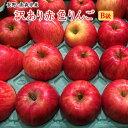 【数量限定特売100ケ−ス】B級長野・青森産りんご【富士】【サンフジ】【つがる】【陽光】【ジョナゴ−ル】等等赤色りんご約5K⇒送料無料