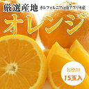 超お買い得品!!【オレンジ】無選別15個入り【送料無料】
