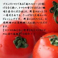 お試し企画!トマトドレッシング3本セットさわやかなサラダの季節です。【送料無料-0621】【楽ギフ_包装】●【楽ギフ_のし】●【楽ギフ_メッセ】
