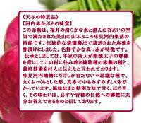 ★福井県美山河内赤かぶ漬5袋(天与の特恵品!)伝統野菜・漬物