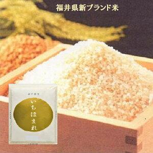 福井のお米特別栽培米【いちほまれ】10K袋又は(5K袋×2)白米・新米・ブランド米⇒送料無料