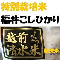 【特別栽培米】越前こしひかり【清水米】【無洗米】お試し2K袋