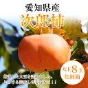 愛知県産【次郎柿】特選 大玉3L・4Lサイズ8玉化粧箱【送料無料】