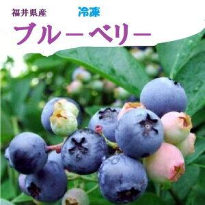 送料無料【冷凍】国産 福井県産ブルーベリータップリ!約2Kg