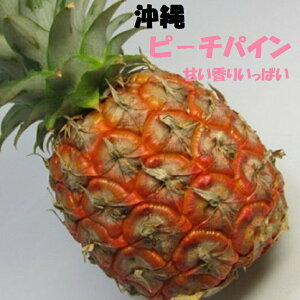 沖縄ピーチパイン 3個入箱夏のトロピカルフルーツが届きました!
