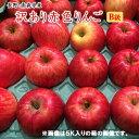 【数量限定特売100ケ−ス】B級長野・青森産りんご【富士】【サンフジ】【つがる】【陽光】【ジョナゴ−ル】等等赤色りんご約3K⇒送料無料