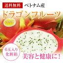 ベトナム産ドラゴンフルーツ 6玉入り化粧箱ほんのり甘酸っぱく、爽やかな味です。【送料無料】