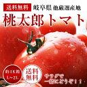 【100ケ-ス限定】岐阜・福井産桃太郎トマト約4K箱【L〜2Lサイズ】【送料無料】