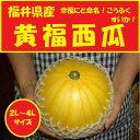 福井県産小玉西瓜【黄福スイカ】2L〜4Lサイズ1玉入り箱【送料無料】