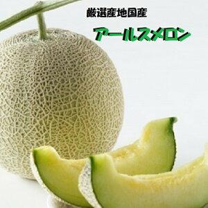 福井県産他最高級アールスメロン《青肉》2Lサイズ以上1玉化粧箱【生産者のこだわり】《果物 詰め合わせ》《フルーツ 盛り合わせ 》送料無料6月下旬より発送予定です。