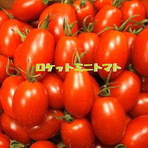 ★ロケットミニトマト【あいこちゃん】 約1K箱11月下旬頃入荷予定です