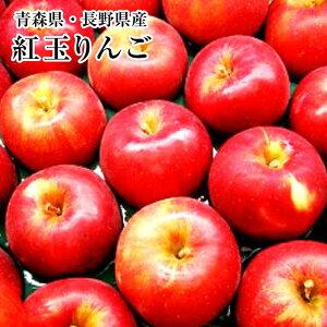 長野・青森産りんご【紅玉】お試し10個入り⇒送料無料