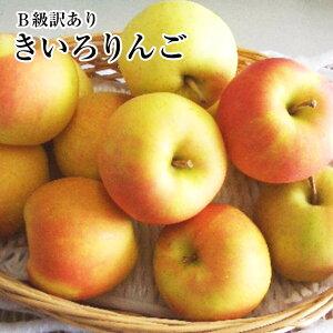 B級訳あり黄色りんご約5K入り【トキ】【きおう】【金星】【王林】【シナノゴールド】等黄色林檎たち旬の時期に旬の品種を9月下旬頃〜予定