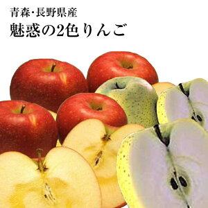 《約3K》青森・長野産富士リンゴ(サンフジ)(秋映)ジョナゴ−ル等赤色&トキ・シナノゴールド・王林りんご等黄色⇒送料無料
