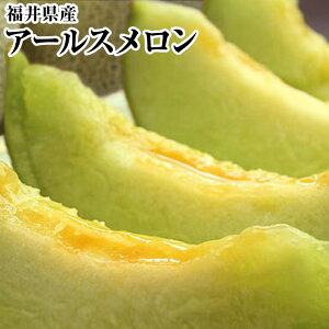 福井県産最高級アールスメロン《青肉》2Lサイズ以上1玉化粧箱【生産者のこだわり】《果物 詰め合わせ》《フルーツ 盛り合わせ 》送料無料6月下旬より発送予定です。