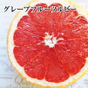 グレープフルーツ【ルビー】30個入り1ケース健康・ダイエット・美容・母の日