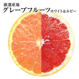 毎日健康!毎日綺麗!★訳ありB級グレープフルーツ【ホワイト又はルビー】混載15個健康・ダイエット・美容・母の日