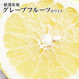 ★グレープフルーツ【ホワイト】大玉10個入り化粧箱健康・ダイエット・美容・母の日6月過ぎから発送予定