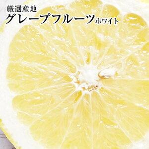 グレープフルーツ【ホワイト】タップリ40個入り1ケース健康・ダイエット・美容・母の日