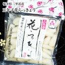 福井県三里浜「三年子花らっきょう」30袋入り箱送料無料