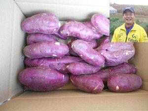 エコファーマー認定 減農薬 茨城県 ひたちなか市 国産 産直 サツマイモ さつまいも 薩摩芋 紅あずま 紅東 5kg お徳用 送料無料