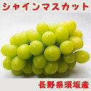 【 シャインマスカット 2kg 】 3または4房入 長野県 須坂産 <送料無料>※一部地域加算