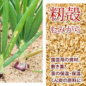 【 籾殻 もみがら 750リットル 】 75リットルx10袋 保温 保湿 緩衝材 長野県産 【 送料無料 】※一部地域有料