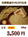 【30年産新米】只今販売制限なし!近畿産ブレンド白米10kg (近畿産のコシヒカリが主体の規格外商品になります。)送…