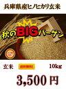 新米 絶対お得!【R2年産】送料無料!一部の地域を除く、兵庫県産 ヒノヒカリ 玄米 10kg 【お米 おこめ コメ ご飯 ご…