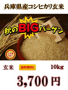 本日から販売開始!期間限定‼最安値に挑戦いたします!【令和元年産】兵庫県産 コシヒカリ 玄米 10kg 送料無料!一部の地域を除く【お米 おこめ コメ ご飯 ごはん 美味しいお米 コシヒ