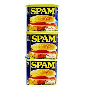 スパムレギュラー 340g×3缶セット 新栄商店 スパムポーク 沖縄 スパムおにぎり 防災備蓄用 レターパック520発送