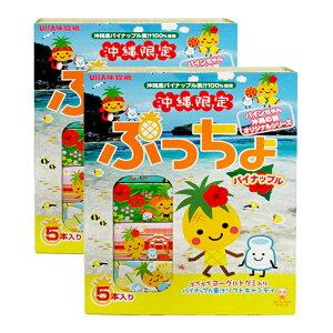 ぷっちょパイナップル5本入り×2箱セット